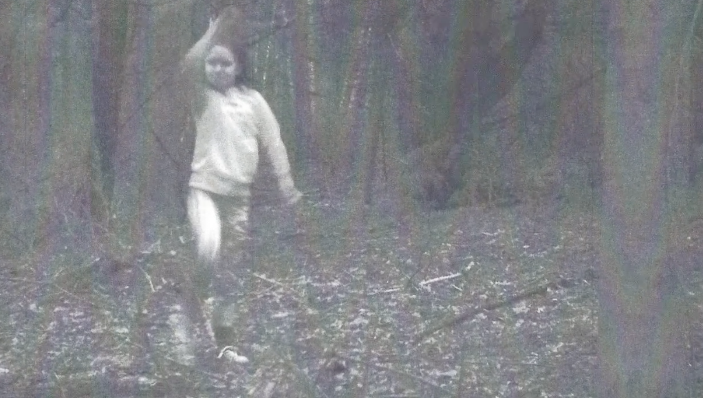 Mysterious photo of girl caught on trail camera spooks town, report says