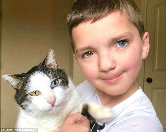 Boy and his cat share same eye, cleft lip condition