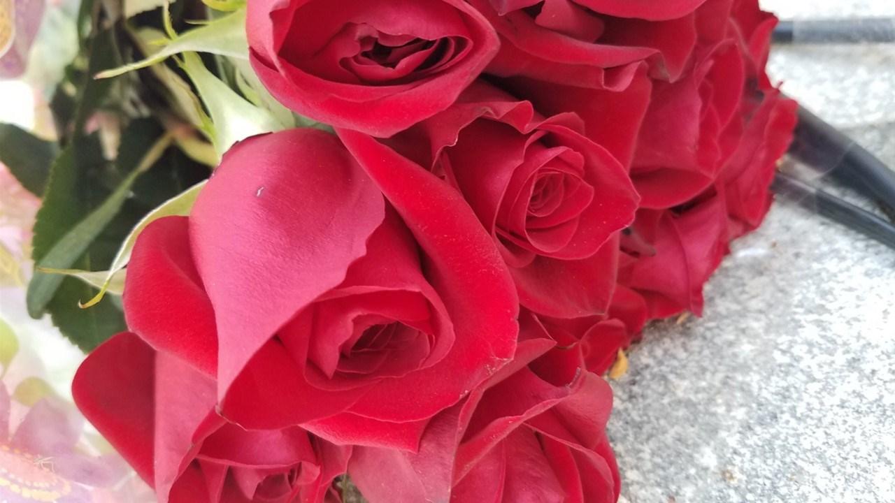 Roses left before the Wichita/Sedgwick County Law Enforcement Memorial in honor of Deputy Robert Kunze.