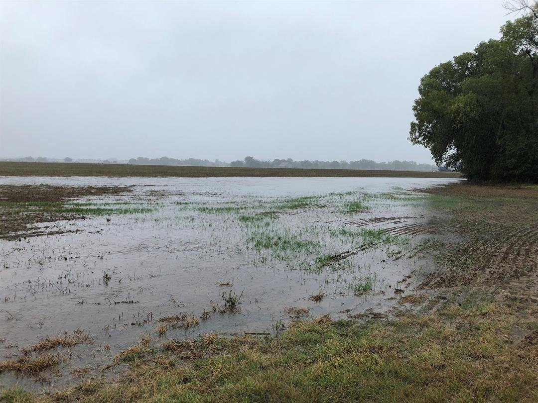 Fields along the Cow Creek are turning into ponds as the creek overflows its banks.