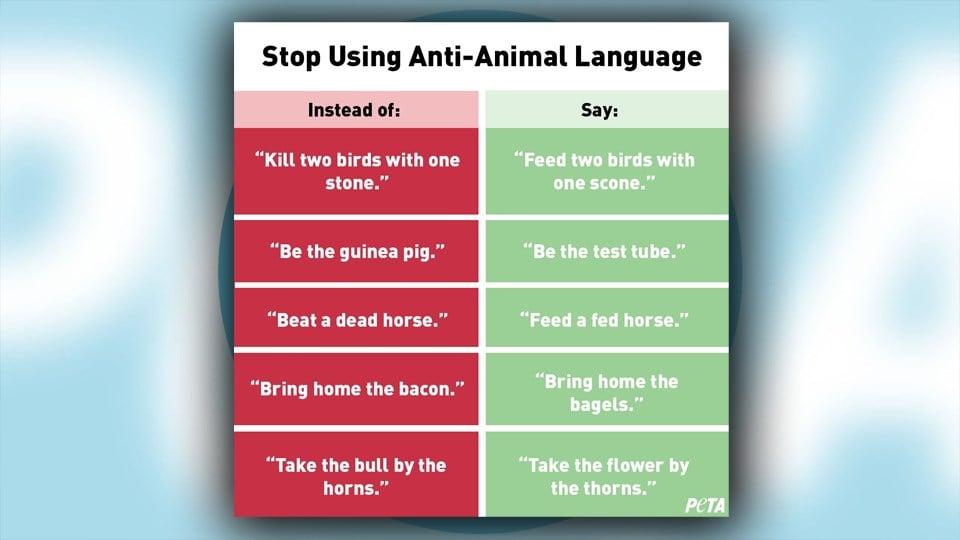 PETA says stop using 'anti-animal language'