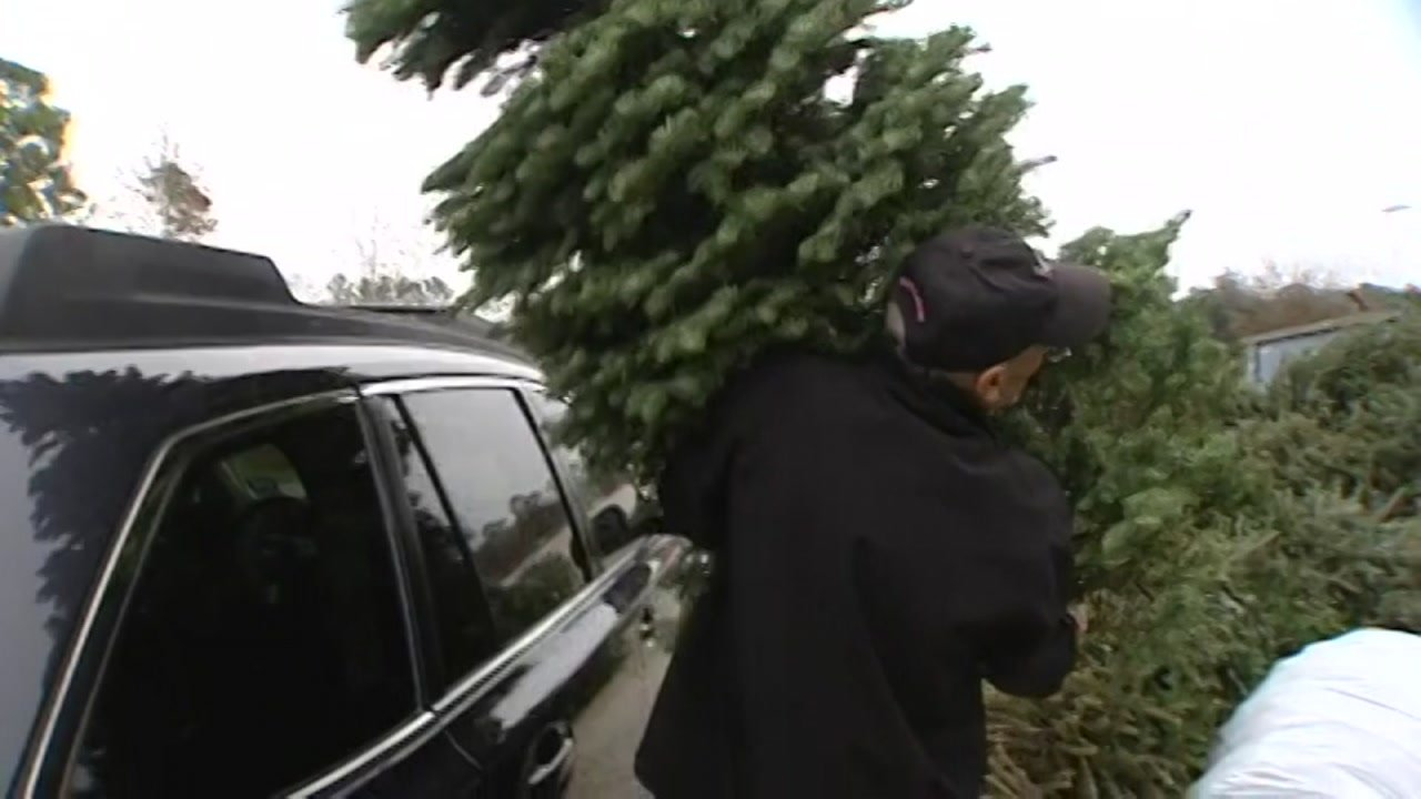 Christmas tree recycling locations in Sedgwick County