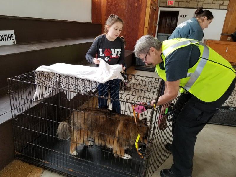 Courtesy: Butler County Animal Response Team Facebook Page
