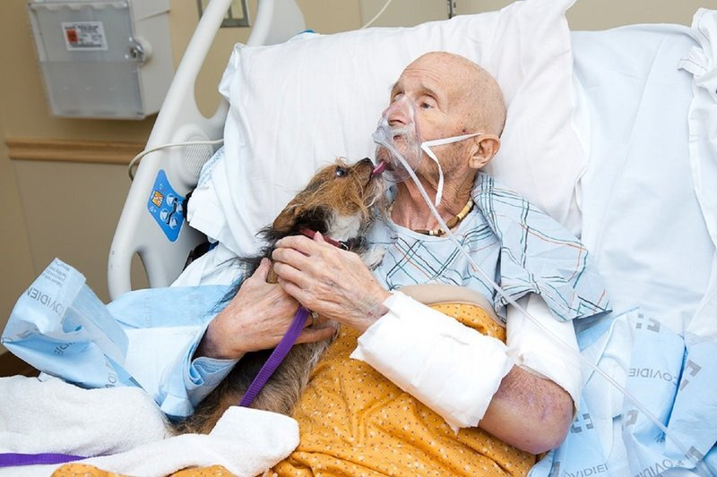 John Vincent is a Marine who fought in Vietnam. The 69-year-old was hospitalized in Albuquerque, New Mexico, before being transferred to a nearby VA hospice facility. (Albuquerque Animal Welfare)