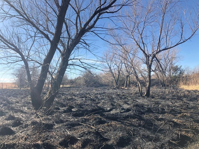 Scorched earth is all that's left in this pasture after a wiildland fire over the weekend.