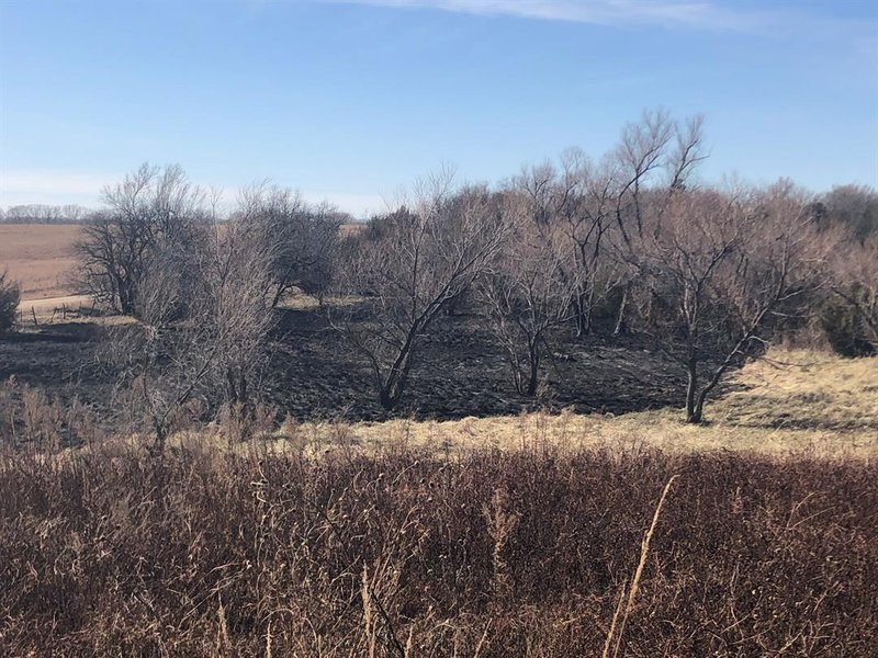 As wildfires advance across fields like this, firefighters say the leading edge of flames can shoot 60 to 80 feet into the air, making fighting them dangerous.