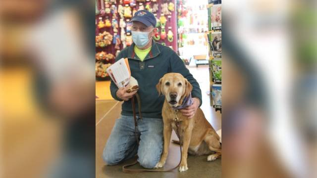 Missing Kansas City dog shows up in Wichita, reunited with family